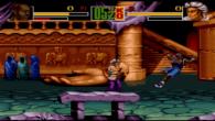 En webbsida utlovar att de ska befria världen från alla exemplar of Shaq fu (Megadrive, SNES, Amiga, Gameboy).