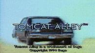Spelet Tomcat alley fick kritikerna att börja höja röster om att FMV-marknaden höll på att svämma över.